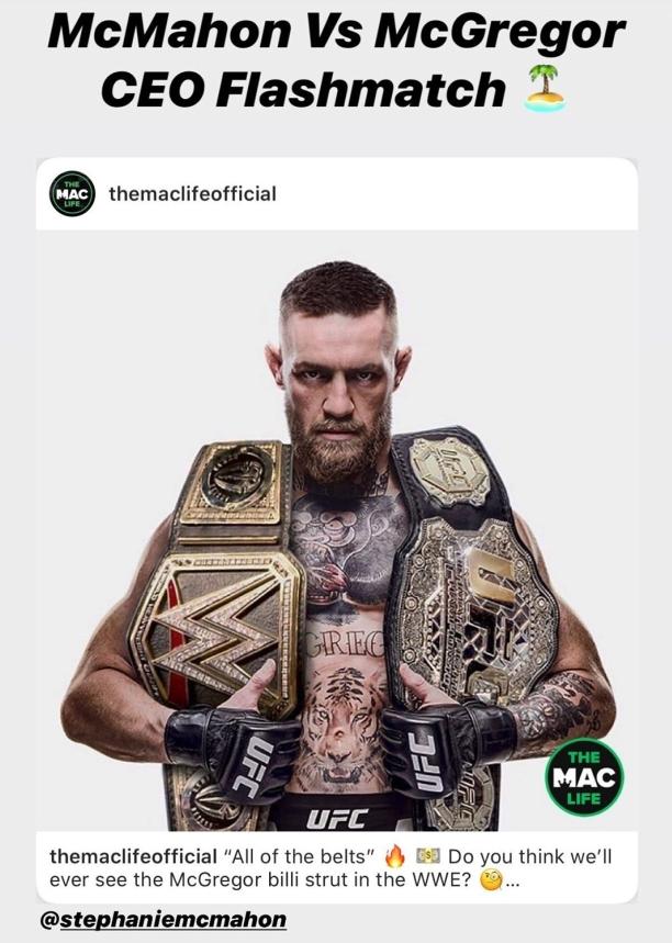 Giải nghệ chưa lâu, McGregor bất ngờ tuyên bố thách đấu với... ông chủ của WWE - Ảnh 1.
