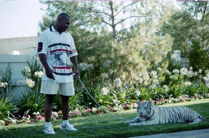 Thú chơi ngông thích nuôi hổ của Mike Tyson và giai thoại mất oan 6 tỷ đồng vì để vật nuôi ăn thịt người - ảnh 1