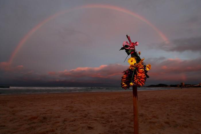 Xót xa hình ảnh chú chó buồn bã ngồi đợi nhà vô địch thế giới tại bờ biển nơi anh không may bị chết đuối - ảnh 3