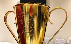 Vô địch, nhưng Tuyển Việt Nam chỉ được nhận bản mini của cúp vàng AFF Cup