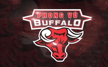 Bình luận viên CKTG 2018 đánh giá như thế nào về Phong Vũ Buffalo tại Bảng A?