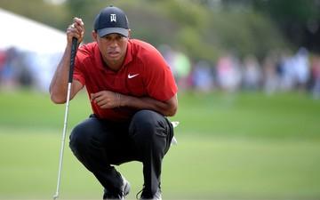 Huyền thoại Tiger Woods thực hiện pha cứu bóng kinh điển