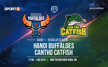 Hanoi Buffaloes vs Cantho Catfish (1/6): Lịch sử lặp lại?