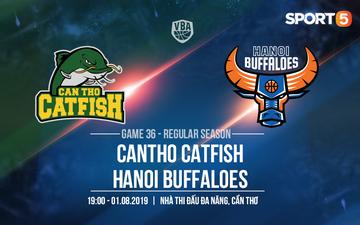 Mike Bell trở lại, Hanoi Buffaloes nuôi hy vọng giành chiến thắng trước Cantho Catfish