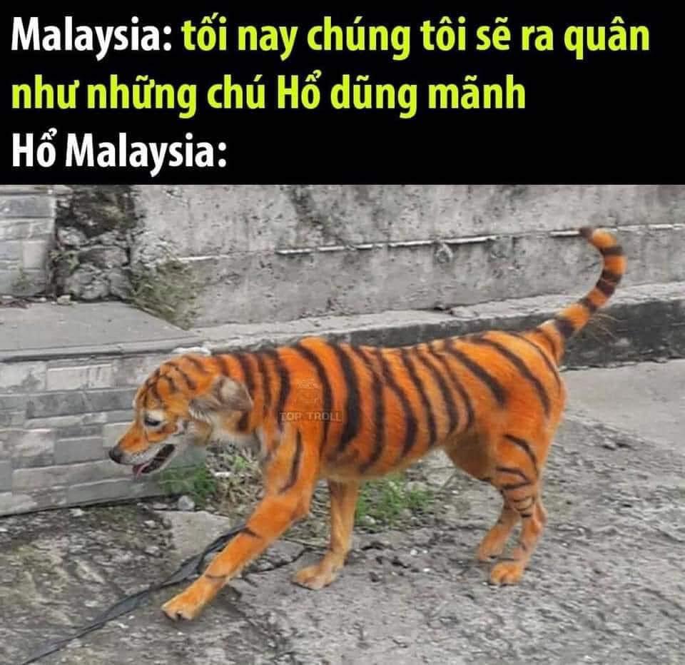 Fan Việt Nam chế ảnh cực gắt ĐT Malaysia sau trận thua thầy trò HLV Park Hang-seo - ảnh 14