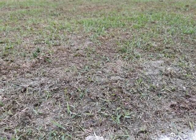 Chứng kiến mặt sân xấu như mặt ruộng, giải bóng đá số 1 Trung Quốc sốc nặng, vội vã hủy trận đấu - Ảnh 3.