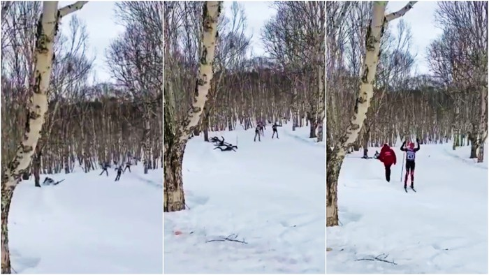 VĐV trượt tuyết tử nạn vì va phải gốc cây - Ảnh 2.