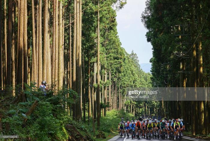 Ngắm cảnh thiên nhiên Nhật Bản tuyệt đẹp qua nội dung xe đạp Olympic Tokyo 2020 - Ảnh 5.
