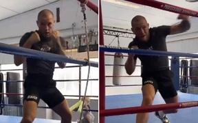 """UFC vừa tuyên bố lấn sân sang boxing, Conor McGregor lập tức đăng video """"đánh gió"""" khiến các fan thích thú"""