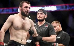 Khabib hỗ trợ võ sĩ bị knock-out khi đến xem sự kiện tại Bellator