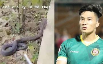 Nổi da gà xem cảnh cựu thủ môn U23 Việt Nam đuổi rắn hổ mang trong vườn nhà