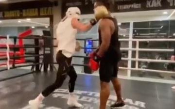 Người đàn ông nhận về cái kết đắng sau khi đứng yên để tay đấm chuyên nghiệp tung đòn