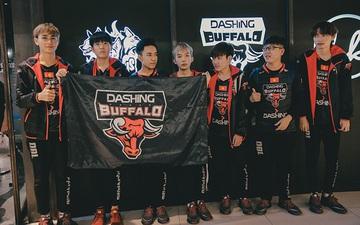 Dashing Buffalo có thay đổi nhân sự đầu tiên trước thềm mùa giải mới